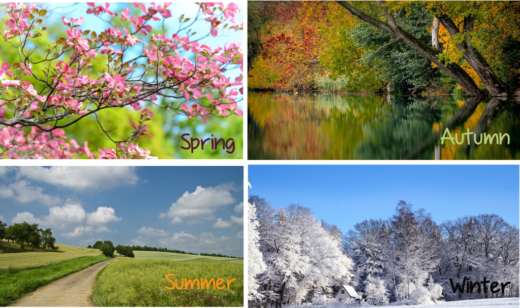 Seasons - Spring - Summer - Autumn - Winter