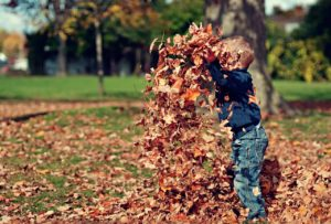 Autumn Fun